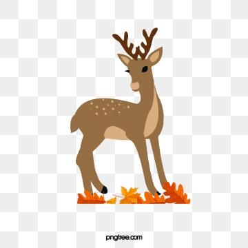Deer PNG Images.
