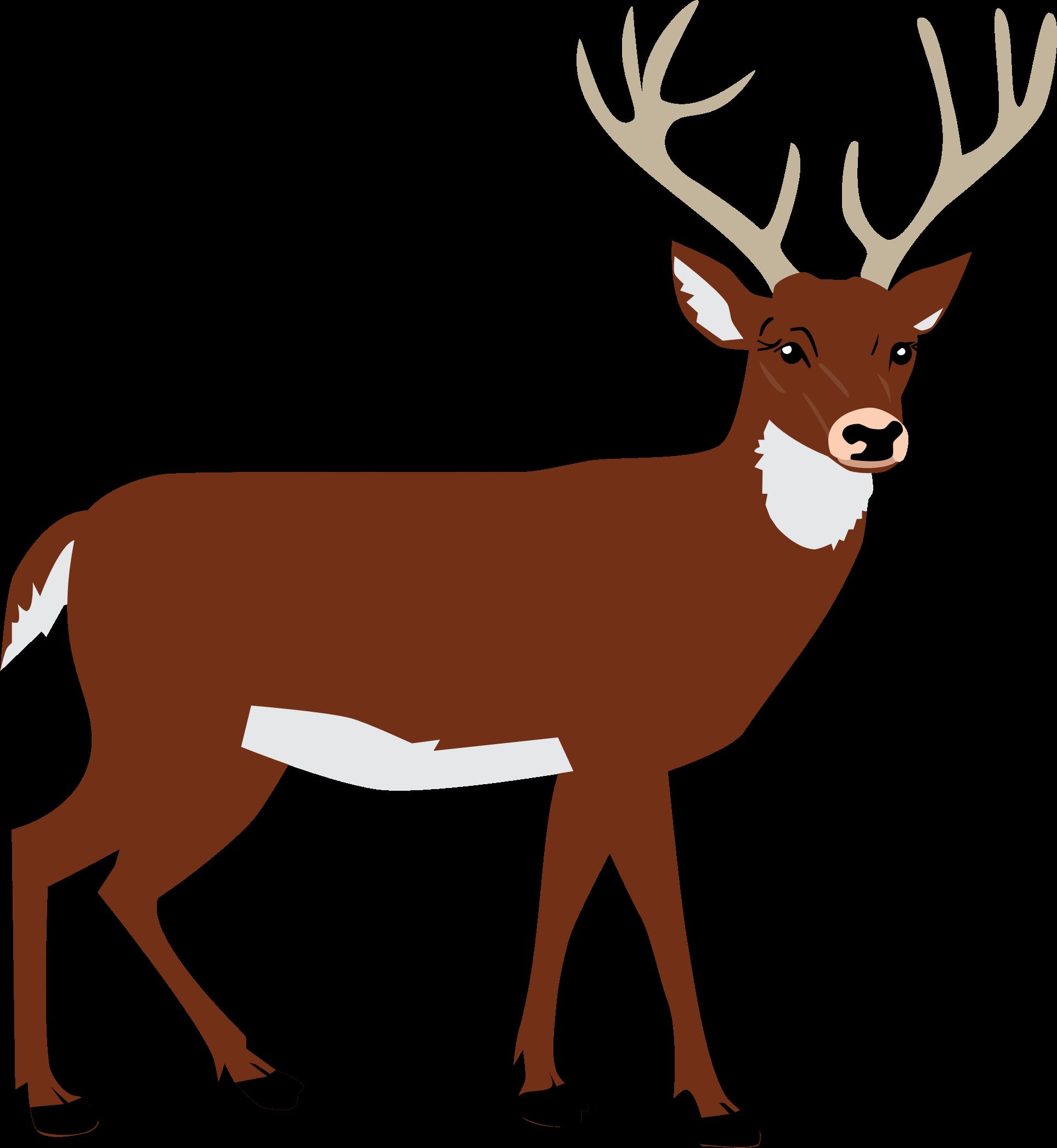 Deer Clipart Png.