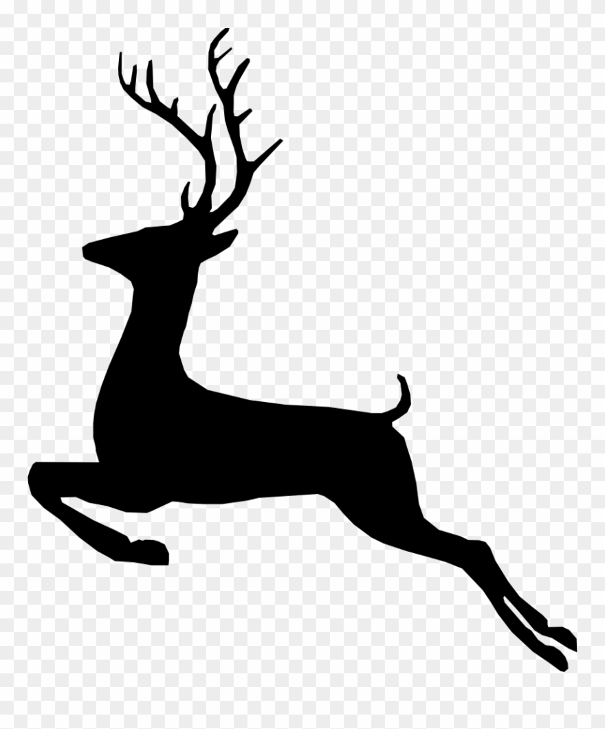 Clip Black And White Buck Vector Svg.