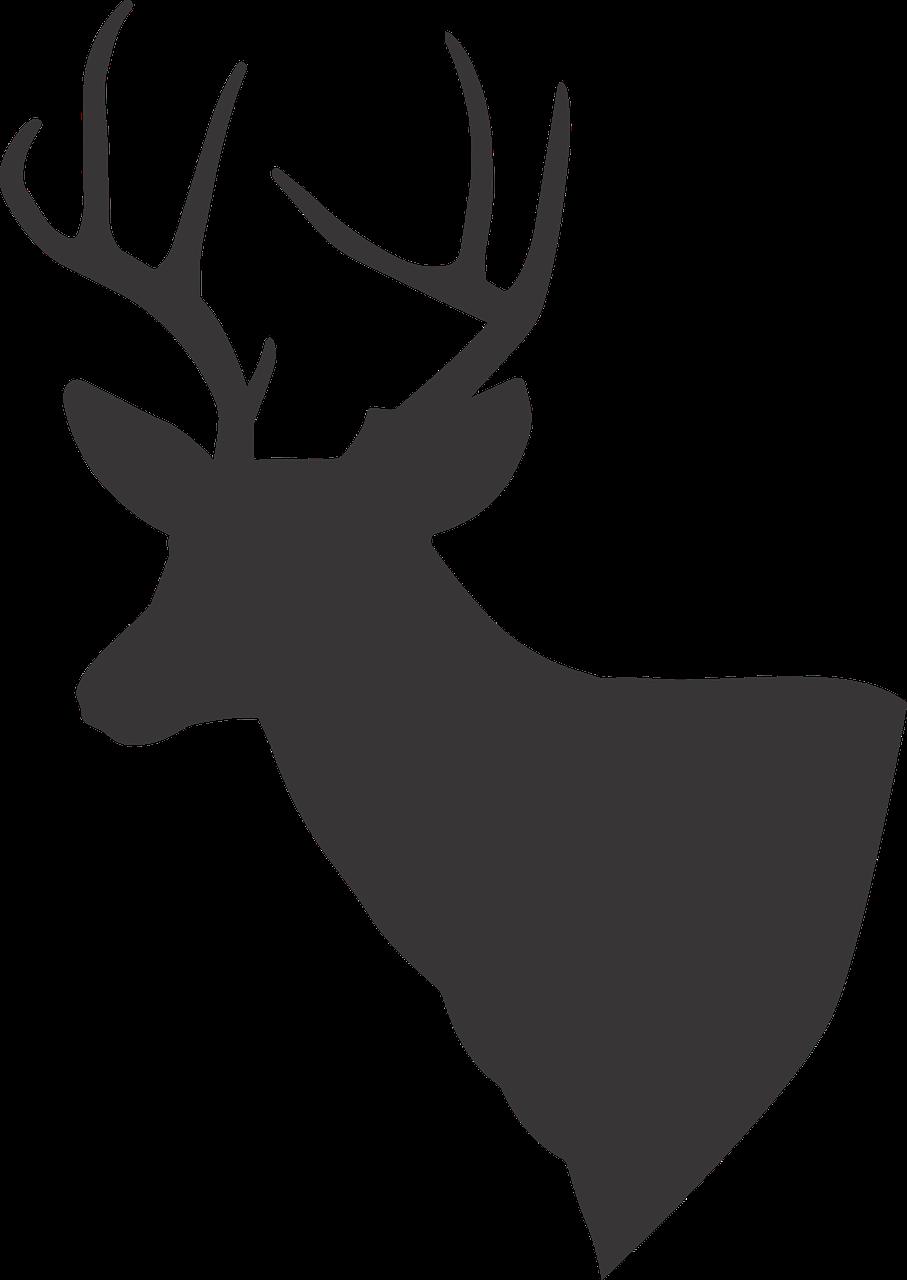 Deer Deer Silhouette Silhouette PNG.