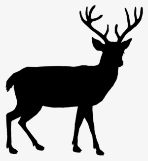 Deer Silhouette PNG, Transparent Deer Silhouette PNG Image Free.