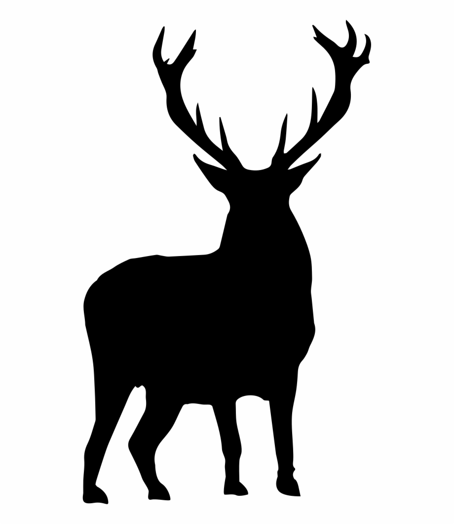 And Svg Deer.