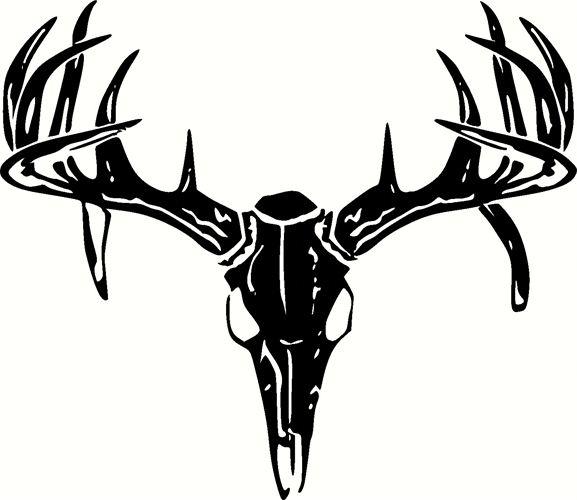Deer Skull Images.