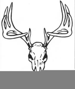 Free Deer Skull Clipart.