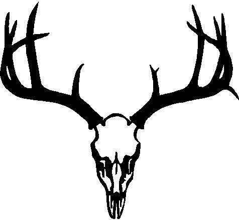 Deer Antler Logo Deer skull, rack, antlers,.