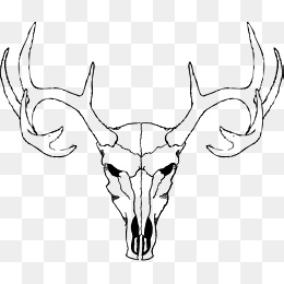 Deer Skull Png (112+ images in Collection) Page 3.