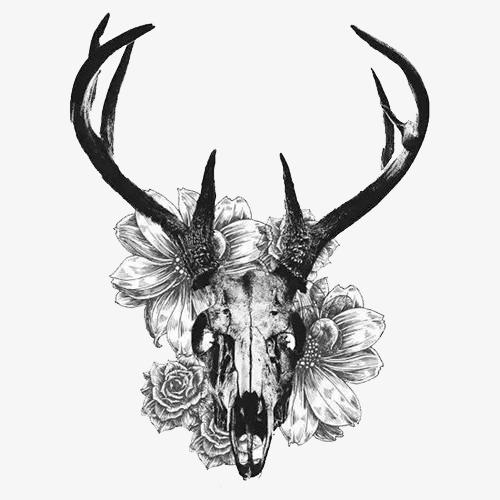 Creative Black And White Deer Skull, Creative, Black And White.