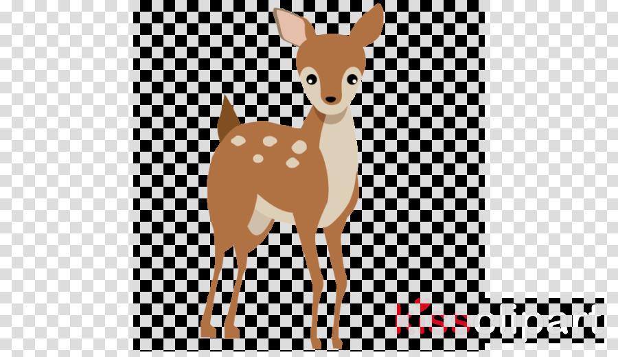 deer fawn snout roe deer tail clipart.