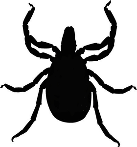 Free Tick Cliparts, Download Free Clip Art, Free Clip Art on.