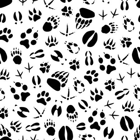 370 Deer Tracks Cliparts, Stock Vector And Royalty Free Deer Tracks.