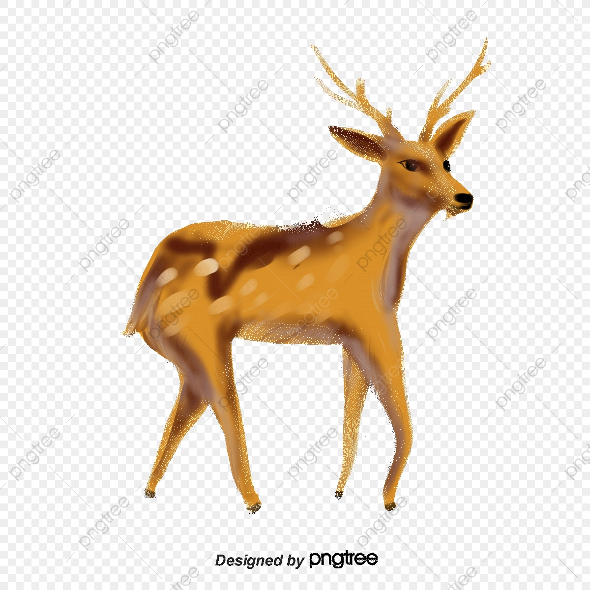 Deer, Deer Vector, Vector PNG Transparent Clipart Image and PSD File.