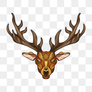 Deer Vector, Free Download Christmas deer, Deer antlers, Deer head.