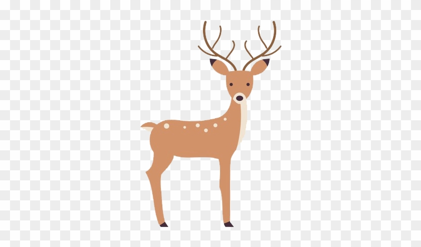 Deer Vector, HD Png Download.