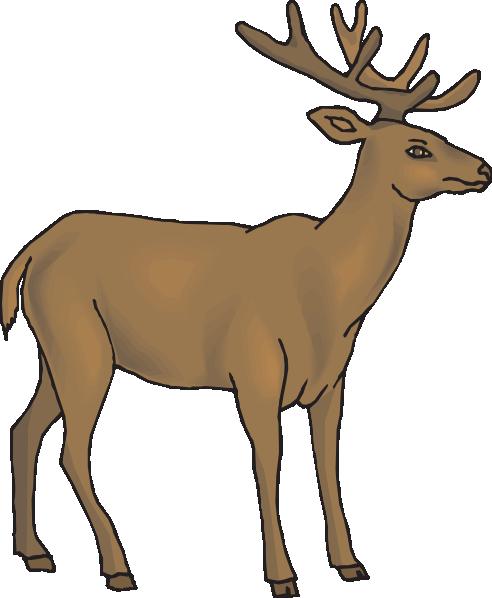 Brown Deer Clip Art at Clker.com.