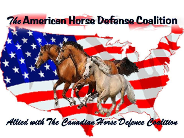 Canadian Horse Defence Coalition's Blog.
