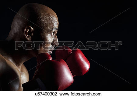 Stock Photo of Boxer in a defensive position u67400302.