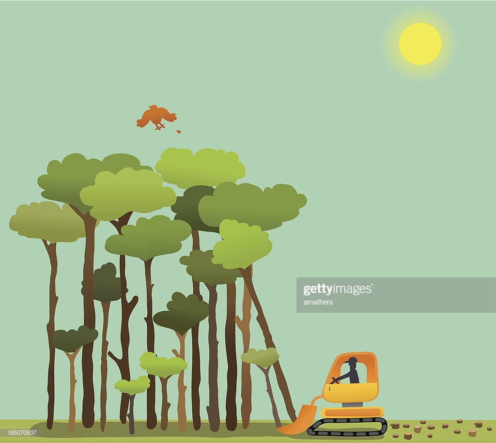 60 Top Deforestation Stock Illustrations, Clip art, Cartoons.