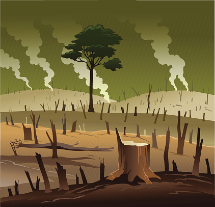 Deforestation clipart clipground for Graphics clipart