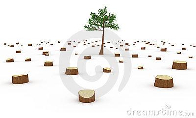 Deforestation Stock Illustrations.