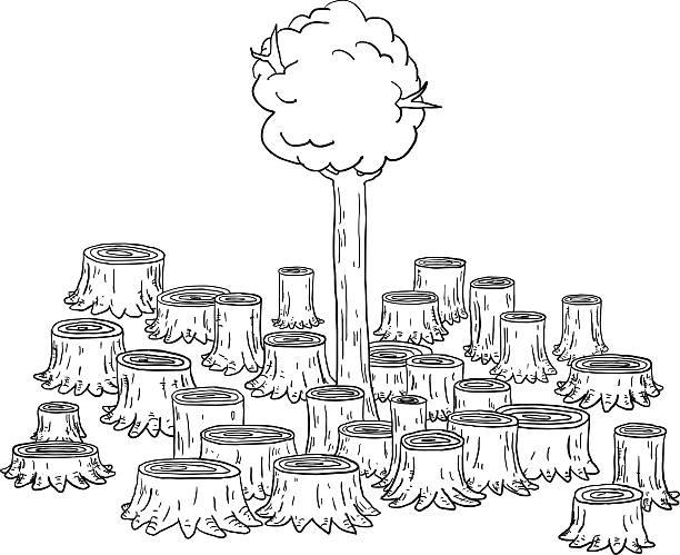 Best Deforestation Illustrations, Royalty.