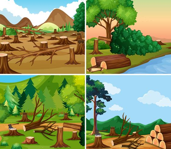 Four different scenes of deforestation.