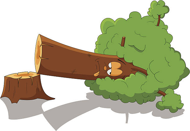 Deforestation clipart 7 » Clipart Station.