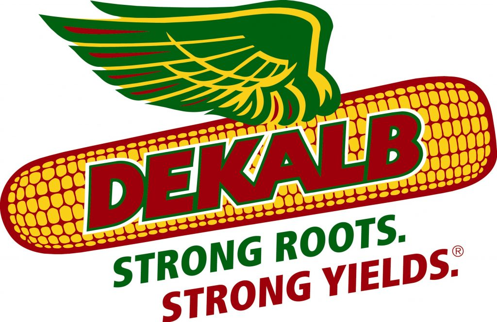 Dekalb Council for the Arts, Inc. Logo.