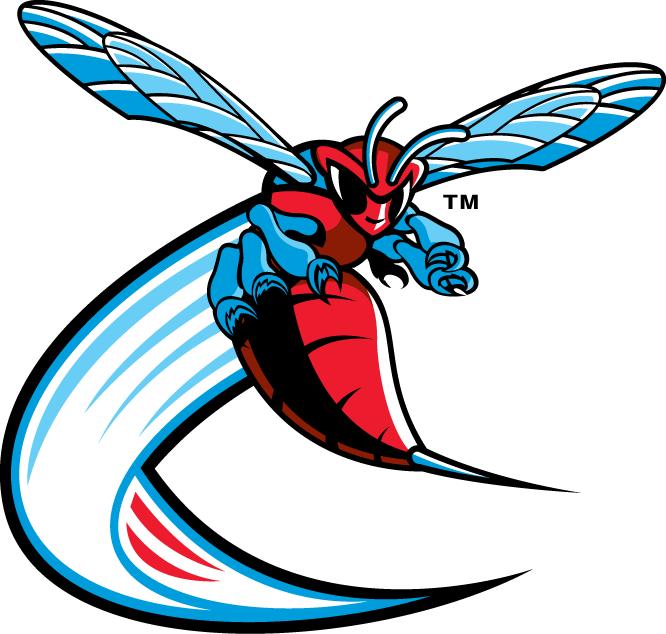 Delaware State Hornets in 2019.