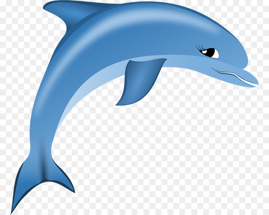 Dolphin Cartoon clipart.