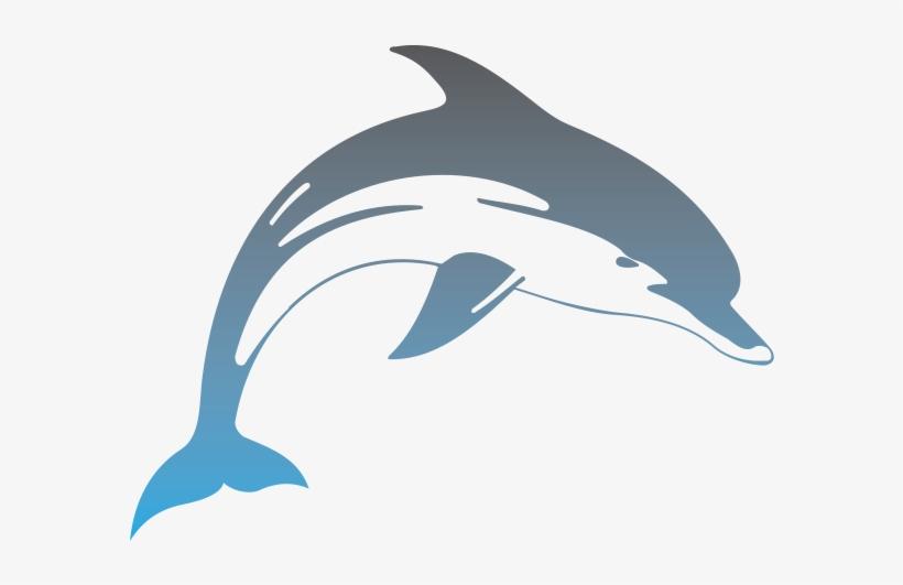 Hawaii Dolphins.