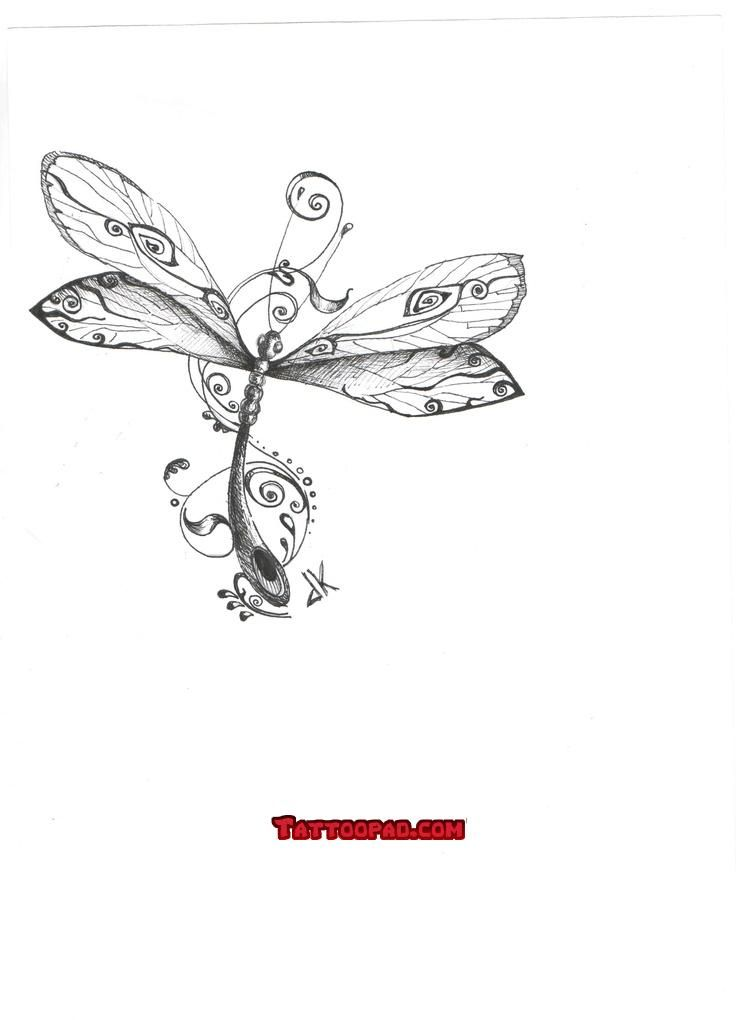 Delicate dragonfly clipart 20 free Cliparts Download images on Clipground 2019