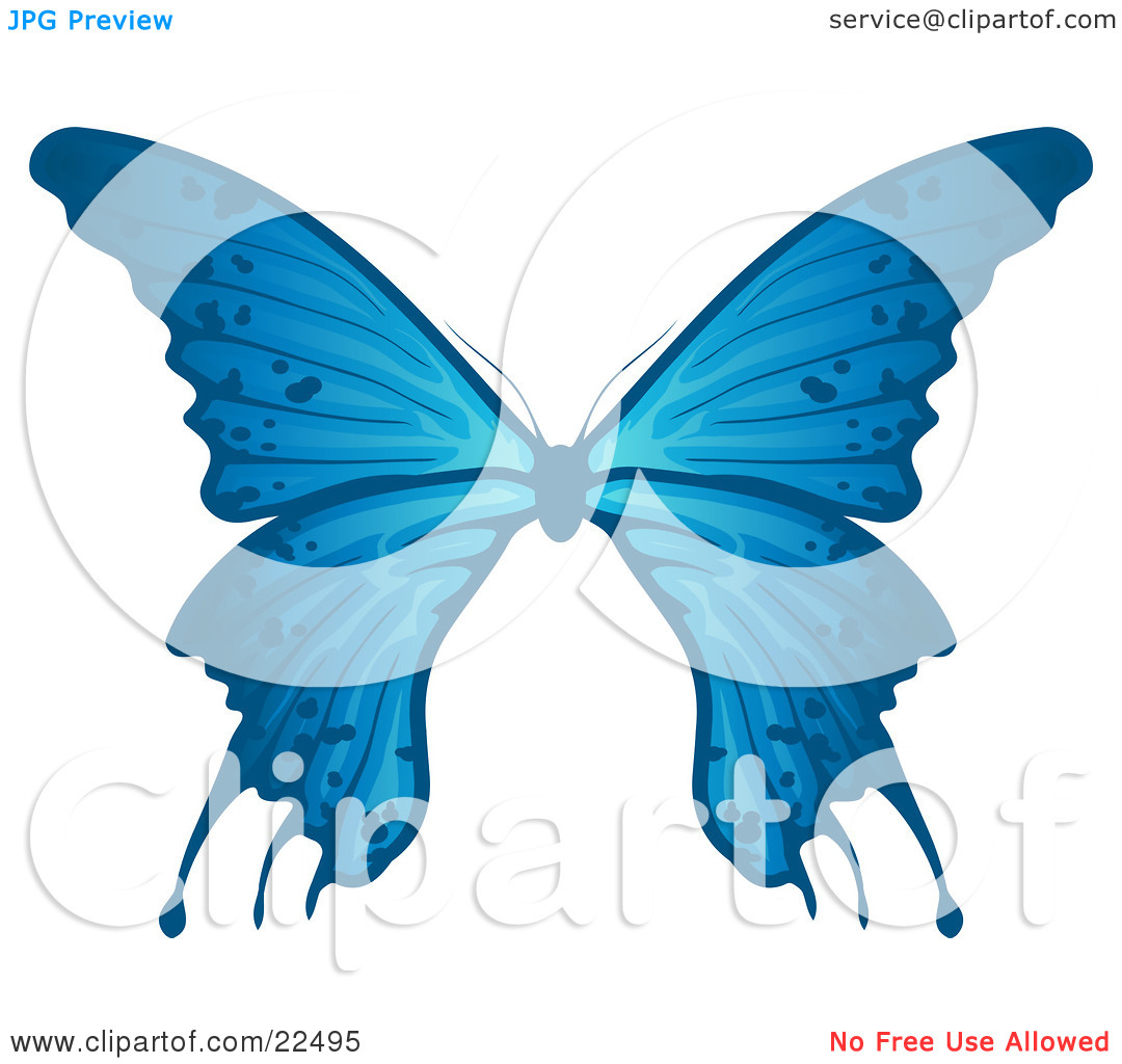 Clipart Illustration of a Delicate Blue Butterfly With Spots On.