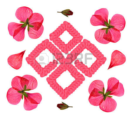 Petals delicate clipart - Clipground