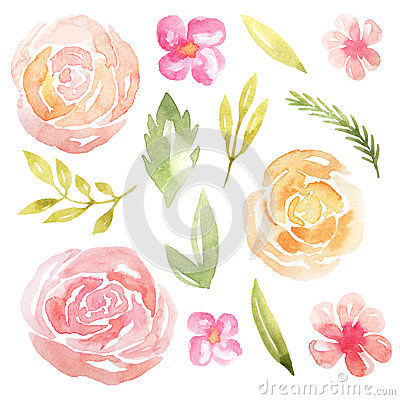 Watercolor Delicate Pink Flowers And Leaves Stock Illustration.
