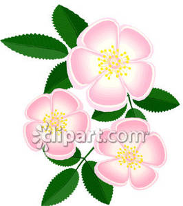 Gif clipart images of delicate pink flowers.