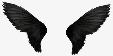 Devil Wings, Wings Clipart, Simple, Creative PNG Transparent Image.