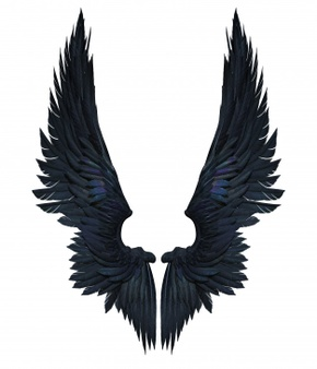 3d illustration demon wings, black wing plumage isolated on white.