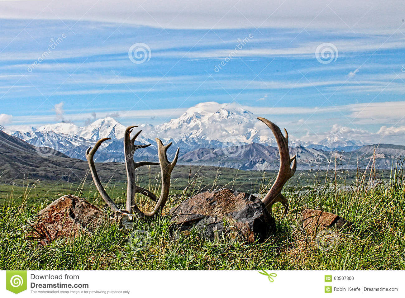 Denali National Park Clip Art.