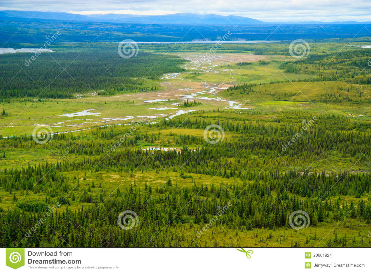 Summer Landscape, Denali National Park, Alaska Stock Images.
