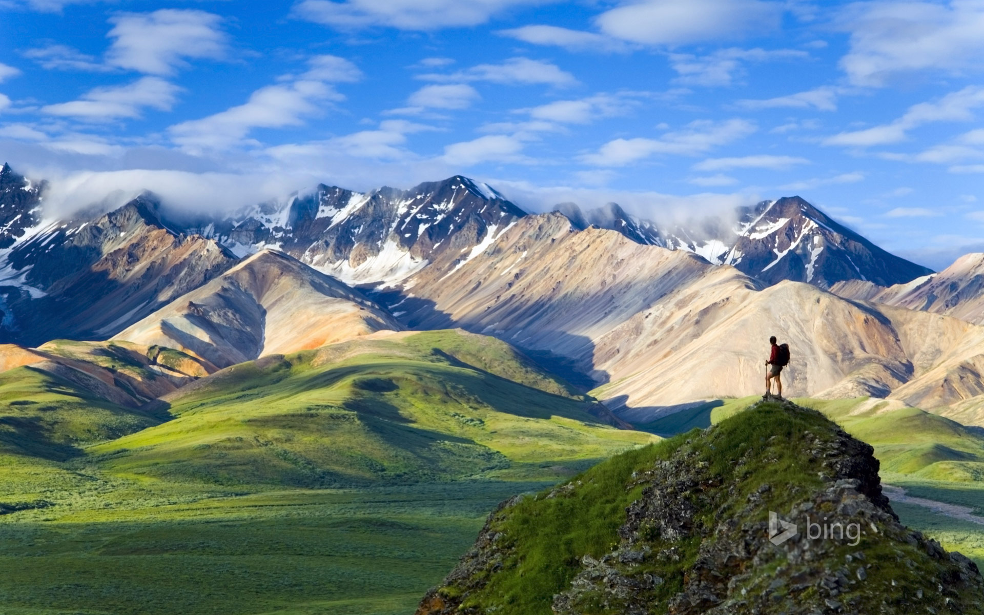 Denali national park clipart.