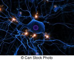 Dendrite Stock Illustrations. 1,430 Dendrite clip art images and.