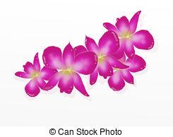 Dendrobium Stock Illustrations. 27 Dendrobium clip art images and.