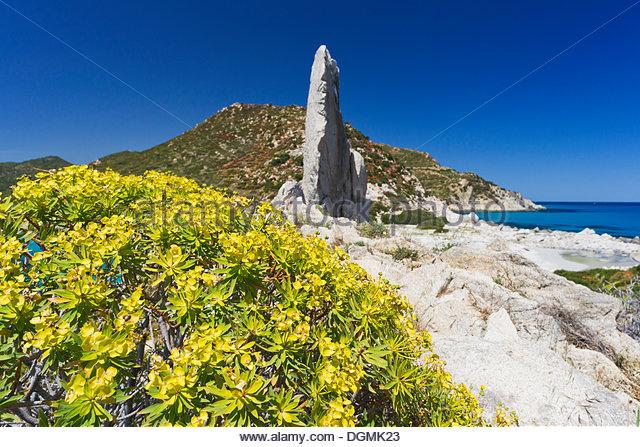 Cagliari Province Stock Photos & Cagliari Province Stock Images.