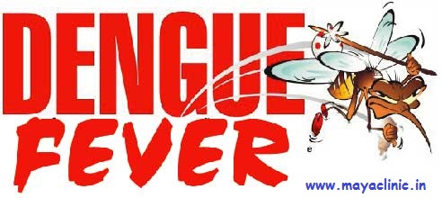 Want to stay safe from Dengue Fever? Read on.