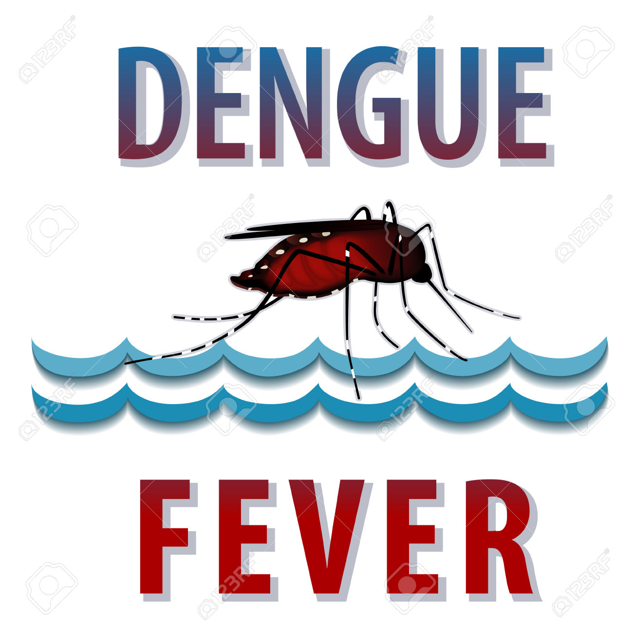 Dengue Fever Mosquito, Infectious Virus Disease, Standing Water.