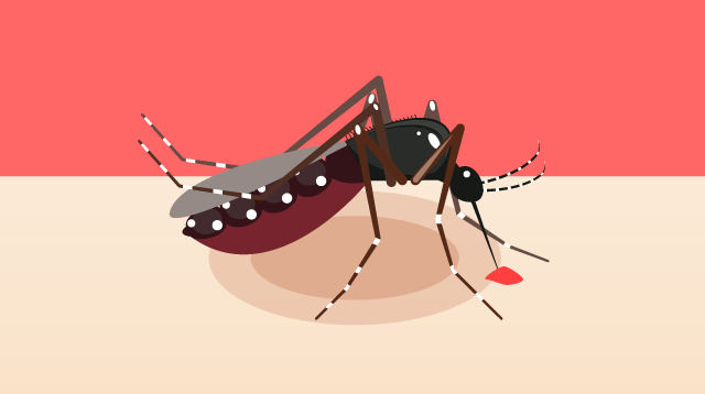 Dengue Symptoms In Children: How You Can Spot The Warnings Signs.