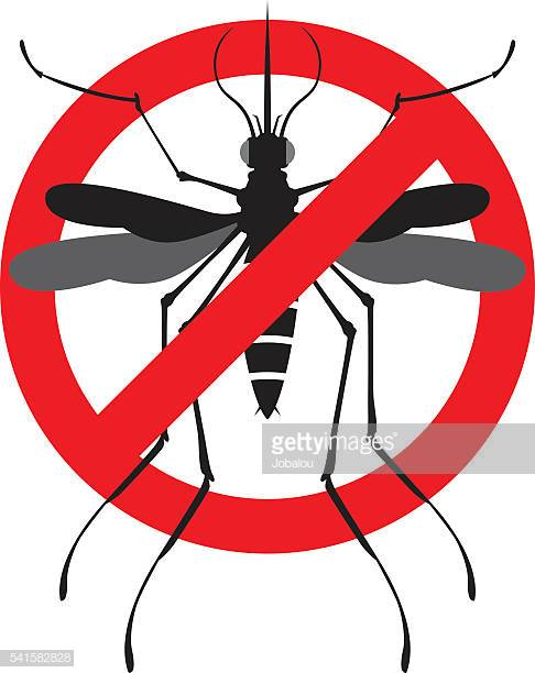 60 Top Dengue Fever Fever Stock Illustrations, Clip art, Cartoons.