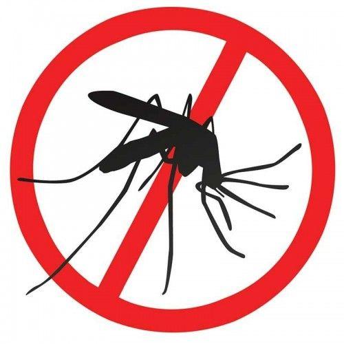 Danger of dengue fever in Lima?.