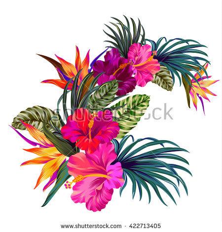 Tropical Stock Photos, Royalty.