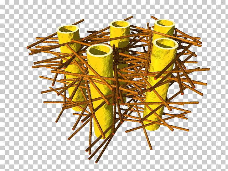 Dentin Human tooth Nanostructure Collagen, mesh crack PNG.